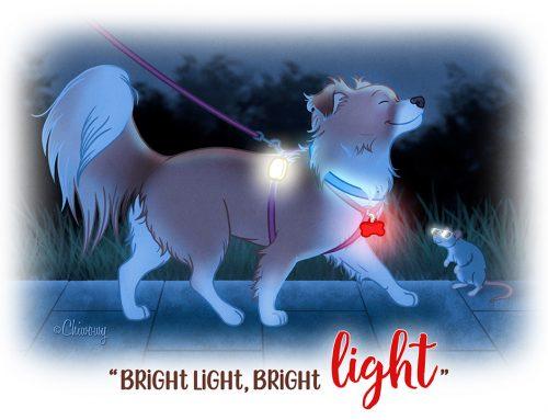 Je hond uitlaten in het donker